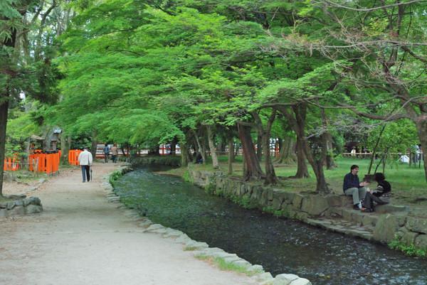 ならの小川 ならの小川 ならの小川 こちらは紅葉シーズンになります。この頃はデジカ... 上賀茂